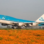KLM offers: from Kiev to New York and back – from $642