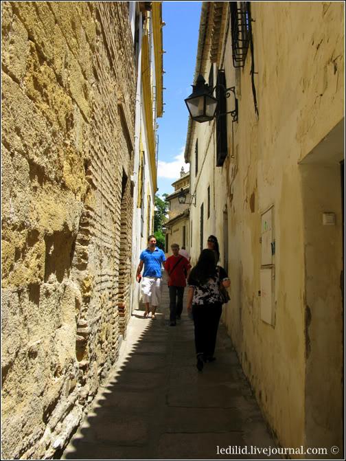 Десь у Худерії – старому Єврейському кварталі