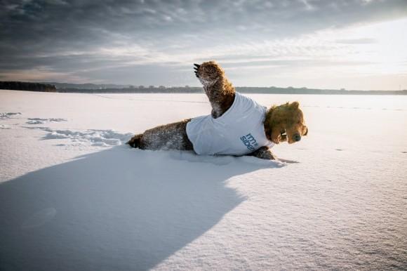 White_beaches_of_Siberia_5